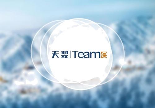 همکاری با شرکت بین المللی TeamE